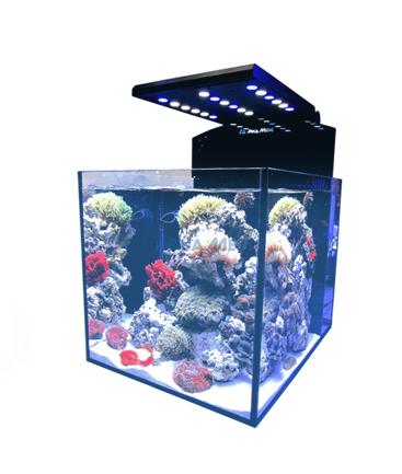 acvarii-prefabricate-marine